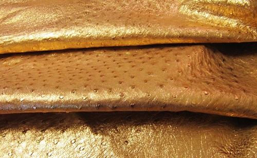 تولید کننده چرم شترمرغ